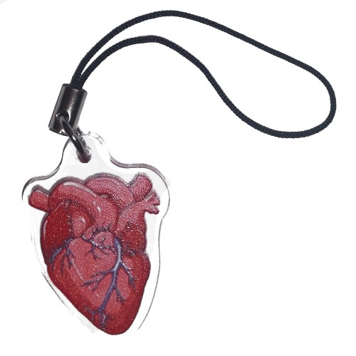 Charm/Keyring - Anatomical Heart