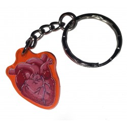 Charm/Keyring - UV Anatomical Heart