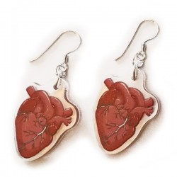Earrings - Anatomical Heart