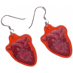 Earrings - UV Anatomical Heart
